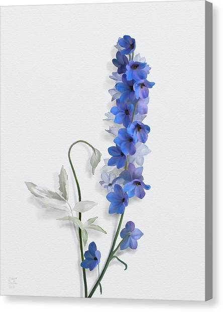 Canvas Print featuring the painting Consolida by Ivana Westin