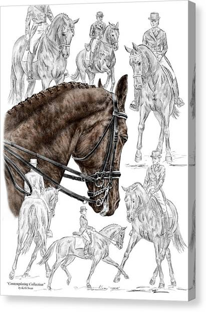 Contemplating Collection - Dressage Horse Print Color Tinted Canvas Print