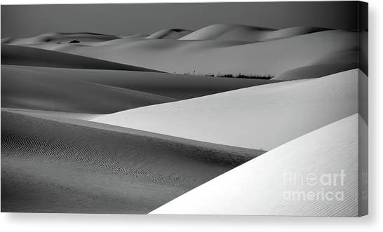 Canvas Print featuring the photograph Contrasting Sand by Brian Spencer