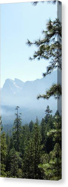 3 Of 4 Controlled Burn Of Yosemite Section Canvas Print