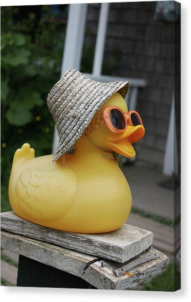 Cool Ducky Canvas Print