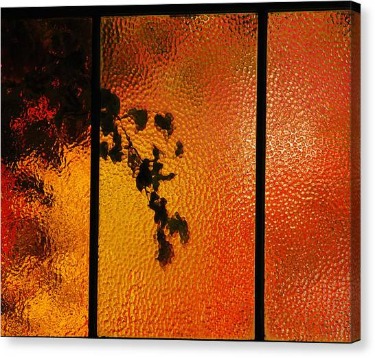 Cool Windows 1 Canvas Print by Jean Booth