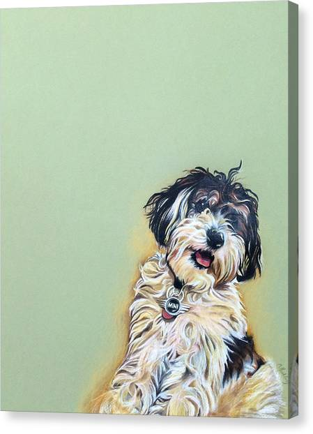 Cooper Canvas Print by Carol Meckling