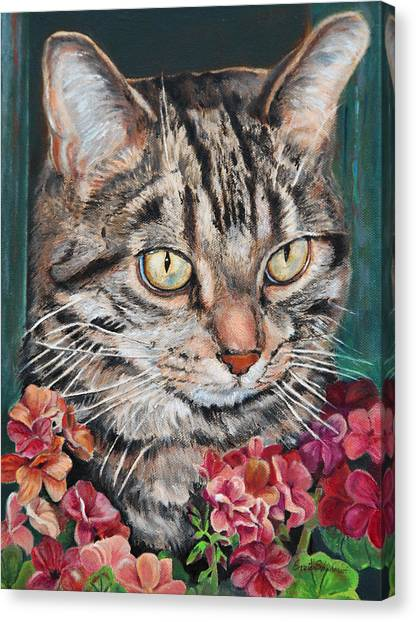 Cooper The Cat Canvas Print