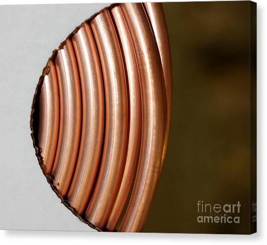 Copper Curves Canvas Print