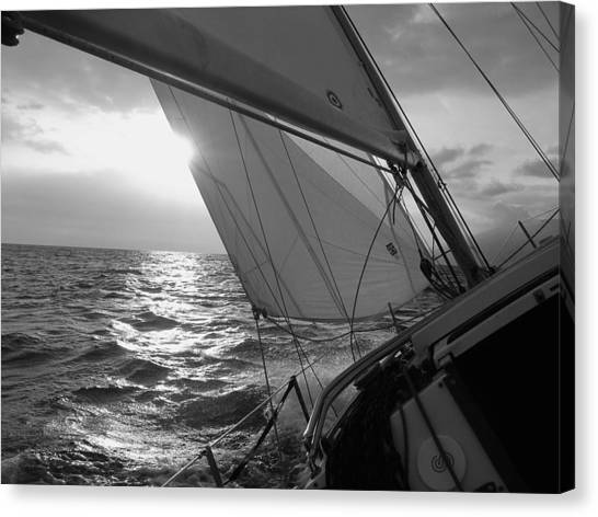 Yacht Canvas Print - Coquette Sailing by Dustin K Ryan