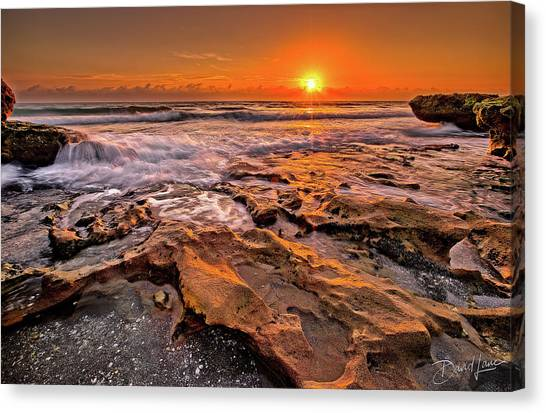 Coral Cove Sun Canvas Print