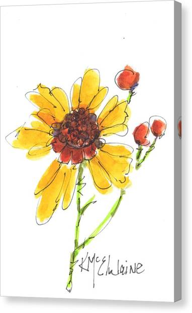 Coreopsis By Kathleen Mcelwaine Canvas Print