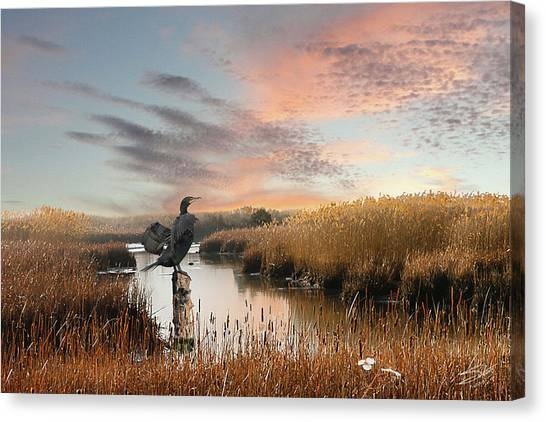 Cormorant At Sunset Canvas Print