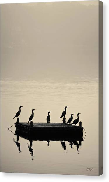 Cormorants And Dock Taunton River No. 2 Canvas Print