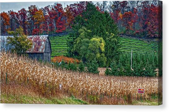 Corn And Ginseng On Poverty Hill Canvas Print