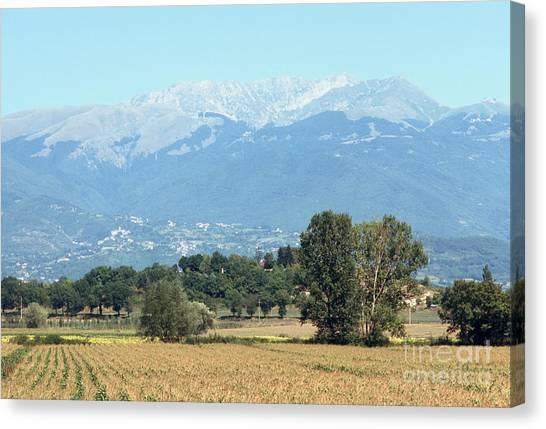 Corn Field With Terminillo IIi Canvas Print