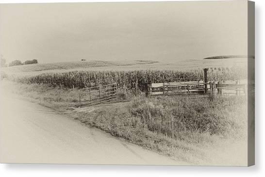 Corn Gate Rusty Canvas Print by Wilma  Birdwell