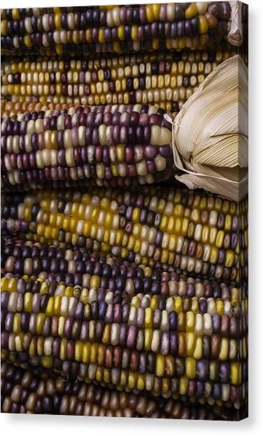 Indian Corn Canvas Print - Corn Kernals by Garry Gay