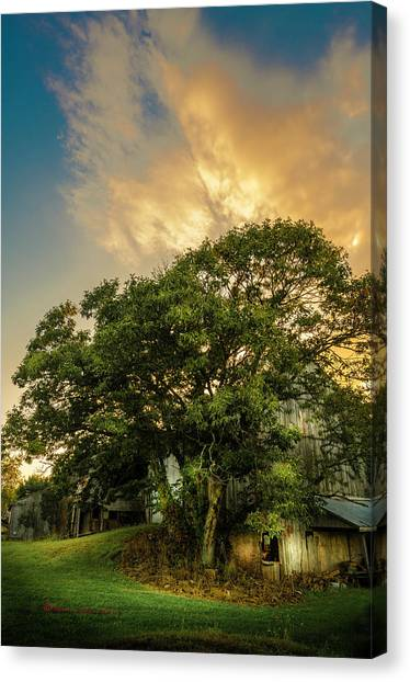 Old Wooden Door Canvas Print - Corner Oak by Marvin Spates