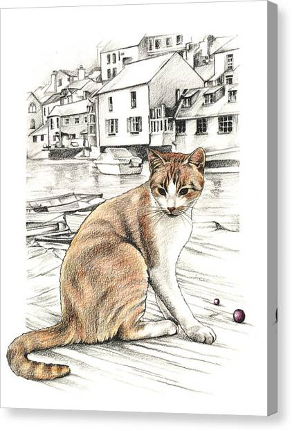 Cornish Cat Canvas Print