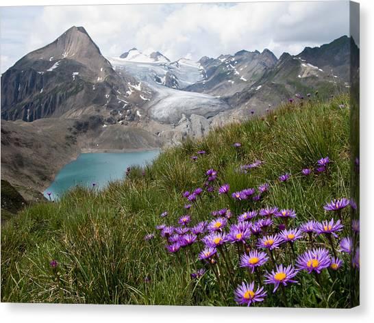 Glaciers Canvas Print - Corno Gries, Switzerland by Vito Guarino