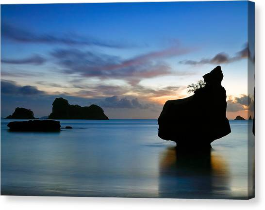 Coromandel Dawn Canvas Print