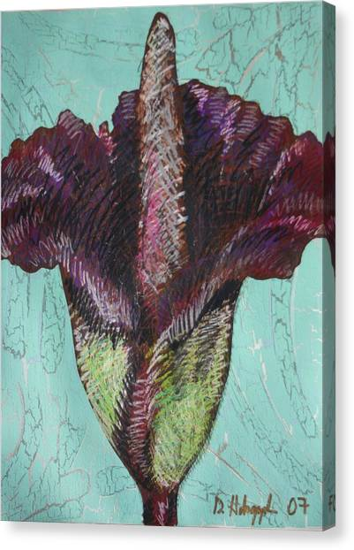 Corpse Flower Canvas Print by Dodd Holsapple