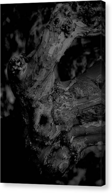 Corpses Fossil Canvas Print