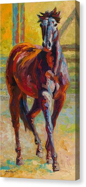 Rodeos Canvas Print - Corral Boss - Mustang by Marion Rose