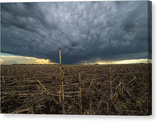Tornadoes Canvas Print - Corsica by Aaron J Groen
