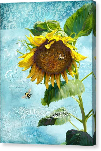 Printers Canvas Print - Cottage Garden Sunflower - Everlastings Seeds N Flowers by Audrey Jeanne Roberts