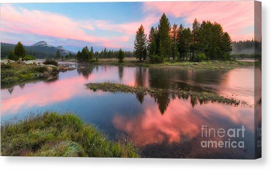 Cotton Candy Skies Canvas Print