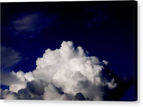 Cotton Sky Canvas Print by Kathy Daxon