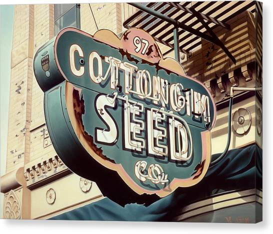 Cottongim Seed Canvas Print by Van Cordle