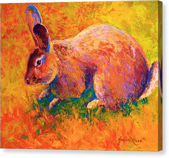 Rabbits Canvas Print - Cottontail I by Marion Rose