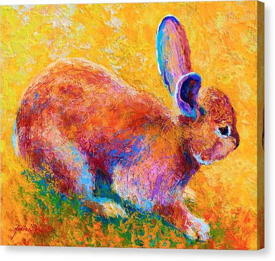 Rabbits Canvas Print - Cottontail II by Marion Rose