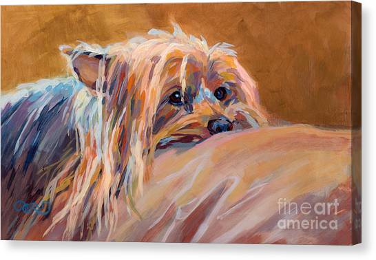 Yorkshire Terrier Canvas Print - Couch Potato by Kimberly Santini