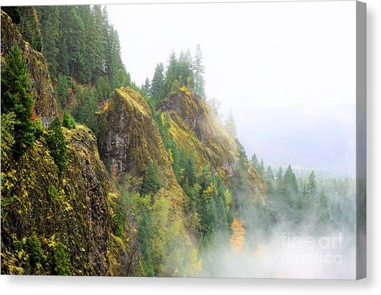 Cougar Reservoir Area Canvas Print
