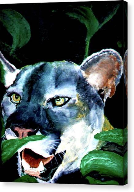 Cougar Canvas Print by Stan Hamilton