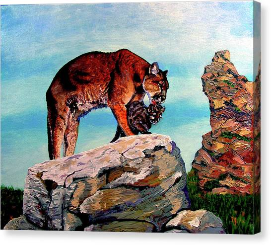 Cougars Mother And Cub Canvas Print by Stan Hamilton