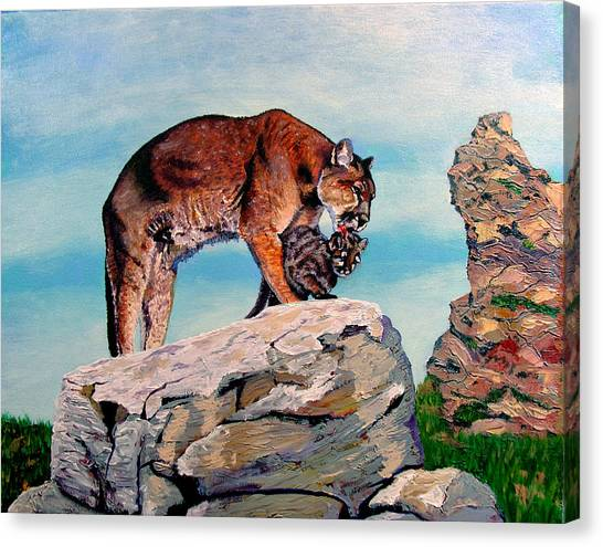 Cougars Canvas Print by Stan Hamilton