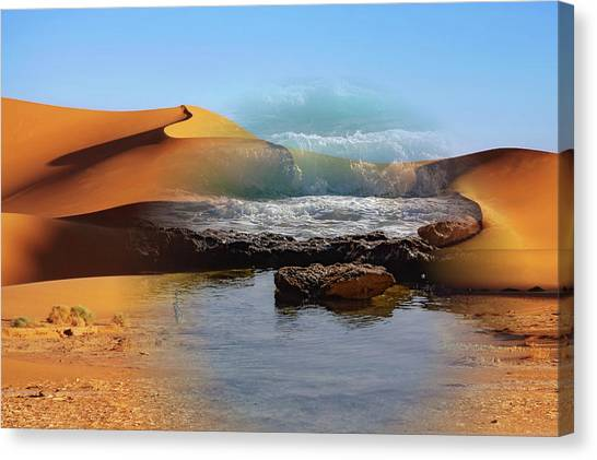 Could This Really Happen? Canvas Print