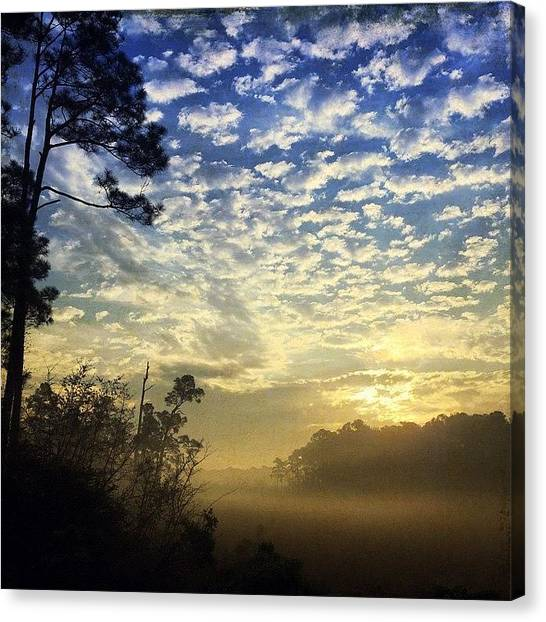 Swamps Canvas Print - Couldn't Get Enough Of That Sky This by Joan McCool