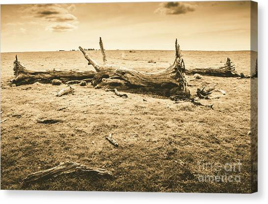 Sepia Canvas Print - Countrified Australia by Jorgo Photography - Wall Art Gallery