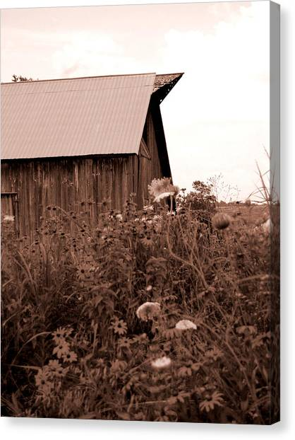 Country Barn Canvas Print by Audrey Venute