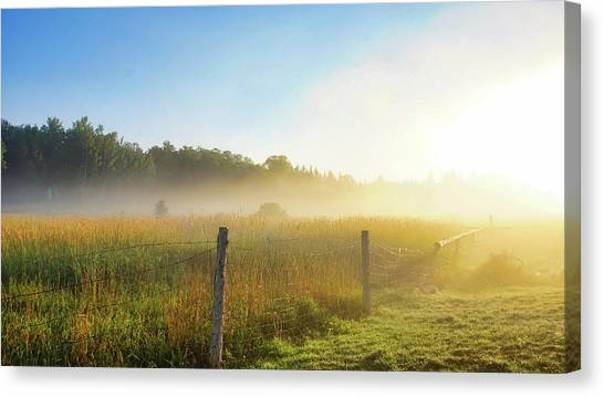 Country Fencerow Canvas Print