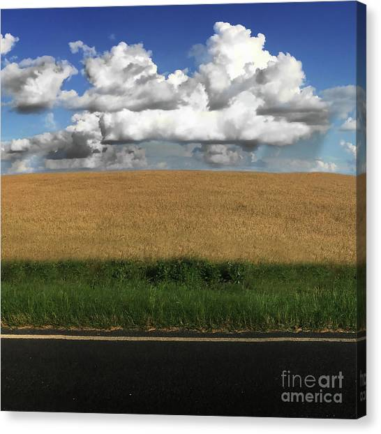 Country Field Canvas Print