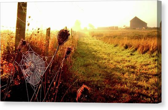 Country Lane Canvas Print