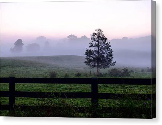 Country Morning Fog Canvas Print