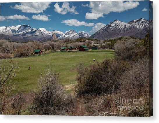 Country Ranches  Canvas Print