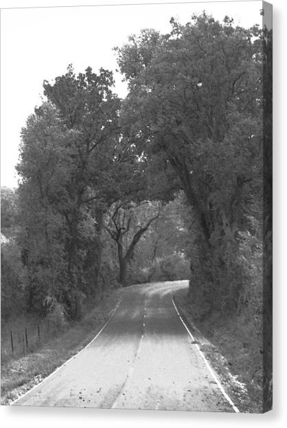 Country Road Canvas Print by Audrey Venute
