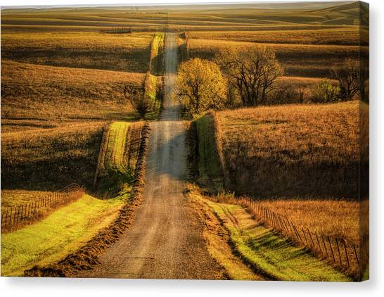 Categories Canvas Print - Country Road by Scott Bean