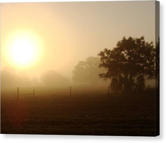 Country Sunrise Canvas Print by Kimberly Camacho