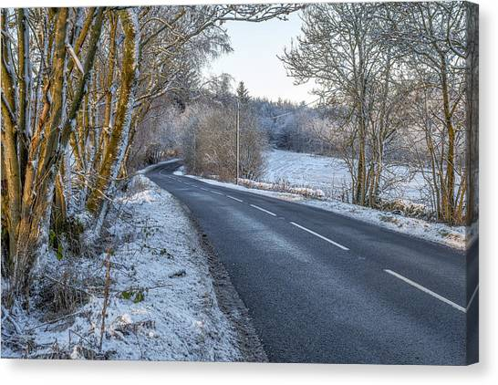 Countryside Road In Central Scotland Canvas Print